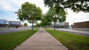 paseo peatonal en las acacias