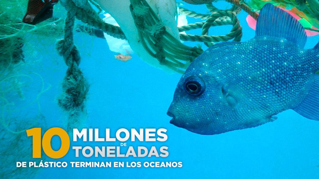 pez nadando entre plástico