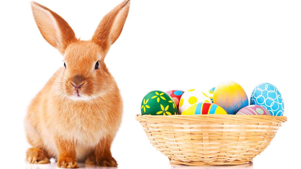 el origen del conejo de pascua