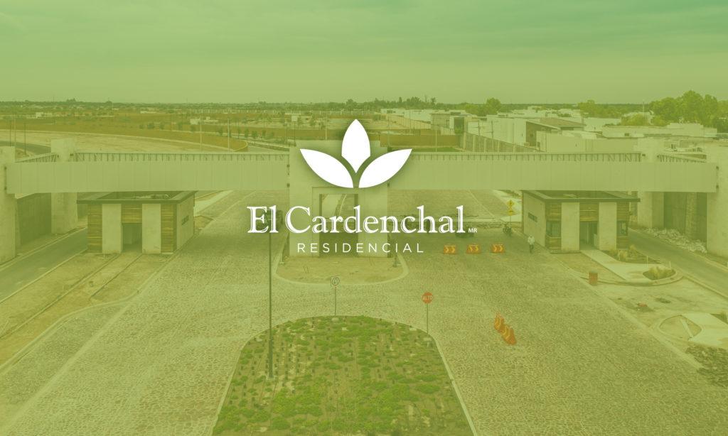 portada para blog sobre El Cardenchal