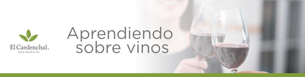 vinos_mayo_BLOG_banner_v1